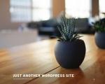 www.aubreyblack.com